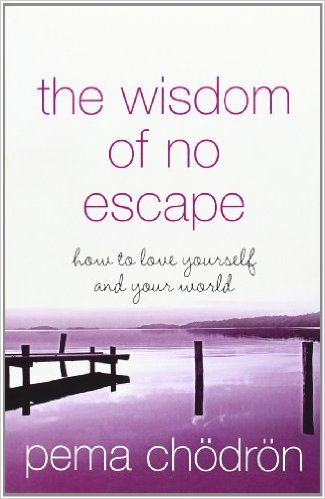 TMM book review #4 – The Wisdom of No Escape